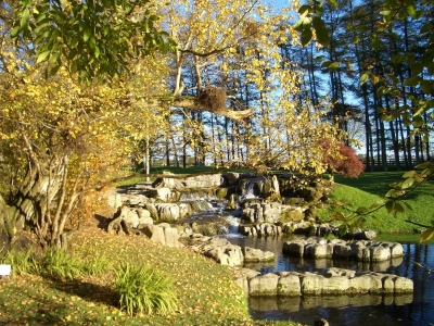 Japanese Garden and Irish National Stud, Kildare, Ireland, 5