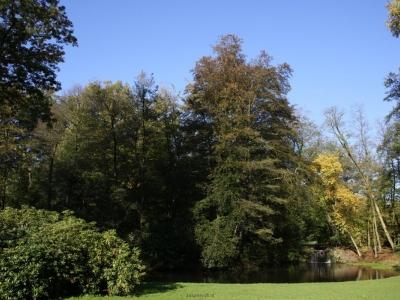 Sonsbeek-Park-Arnhem-2